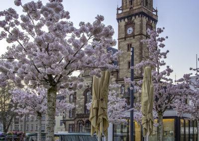 der Rheydter Marktplatz im Frühling credit Theodor Krüppel