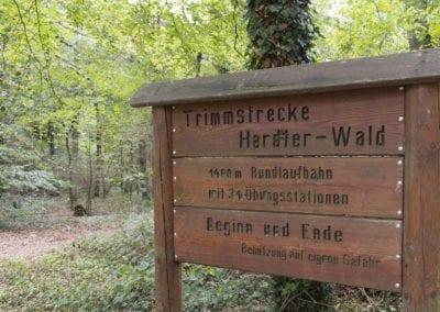 Hardter Wald 1 (c) Guilo Coscia_1920x1080