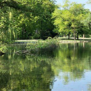 Beller Park