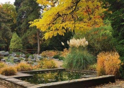 Bunter Garten / Botanical Garden