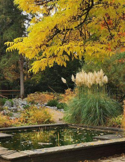 Bunter Garten / Botanischer Garten