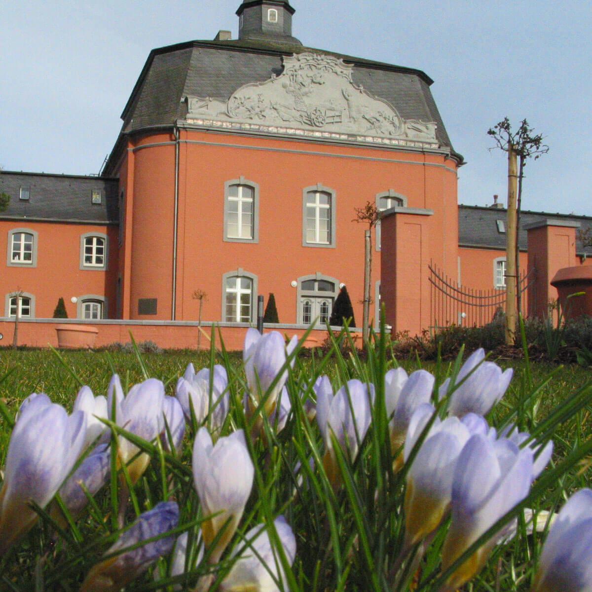 Schloss Wickrath im Frühling
